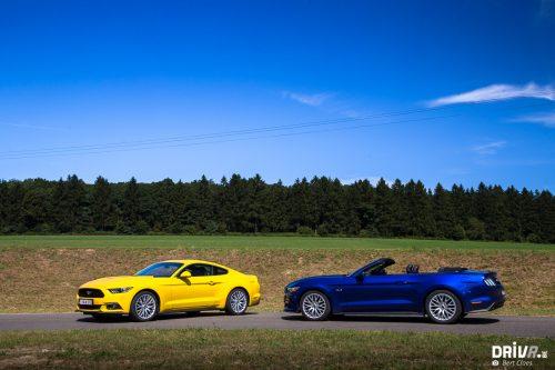 2016_Mustang-16