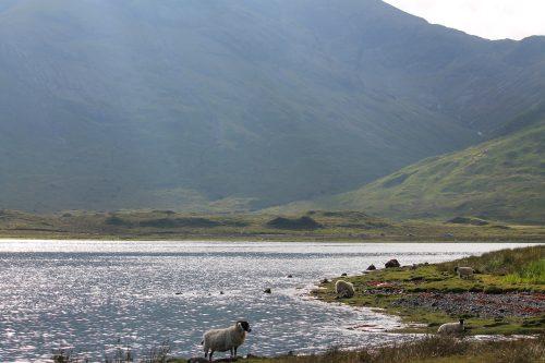 28 Drivr Isle of Skye