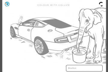 Colour-with-CALLUM-1