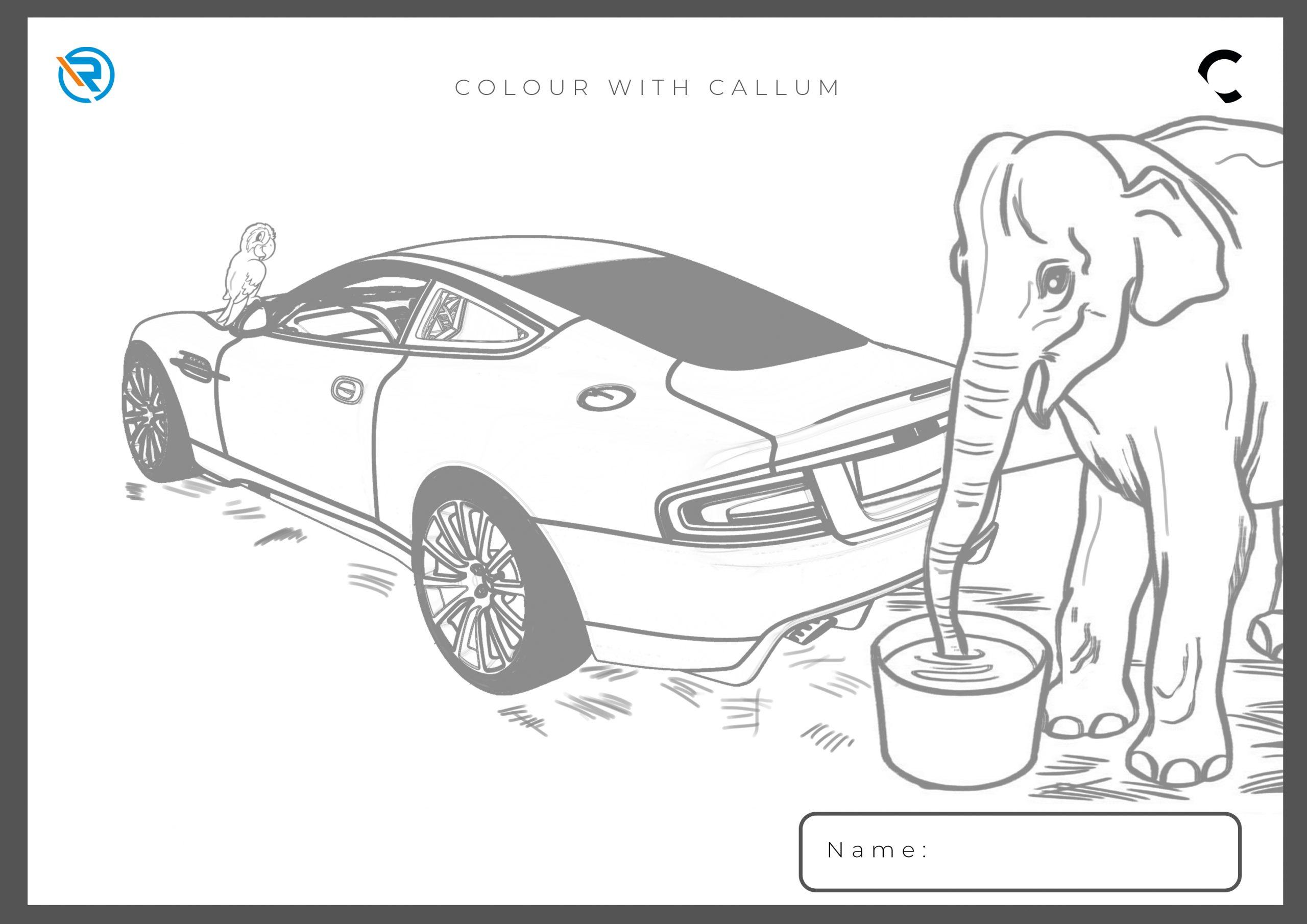 Colour-with-CALLUM-1